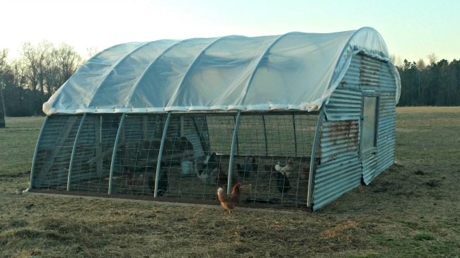 pros-and-cons-of-hoop-house-002